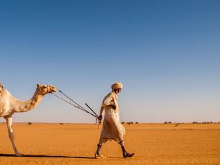 Alone. Wadi al Malik. Sudan.
