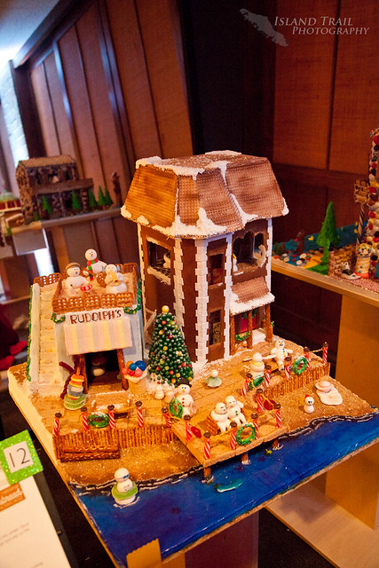 Gingerbread Display - 2014.12.19-9458
