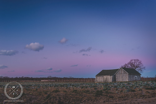 old winter sunset sky ny field clouds barn 35mm landscape evening li suffolk nikon availablelight farm barns january sigma naturallight longisland worn weathered local aged agriculture leaning northfork riverhead slanty 2015 d610 nofo coldd soundave sigma35mmf14 grownonlongisland jschusteritsch northforker jonschusteritsch