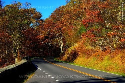 road autumn mountains fall colors season virginia nationalpark colorful unitedstates roadtrip double va curve shenandoah ontheroad elkton blueridge whiteline yellowline