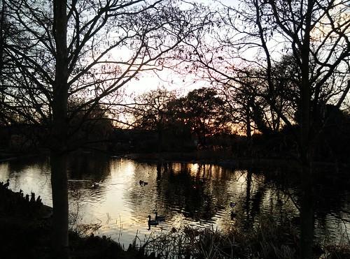 queen mary gardens regents park