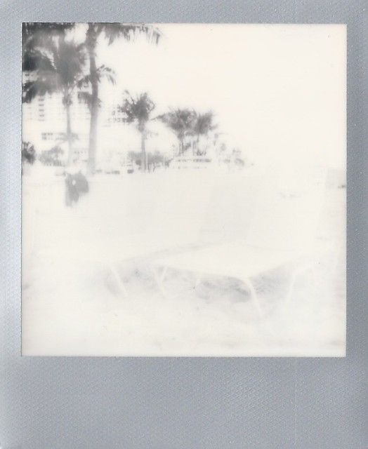 Florida Silver 1 7