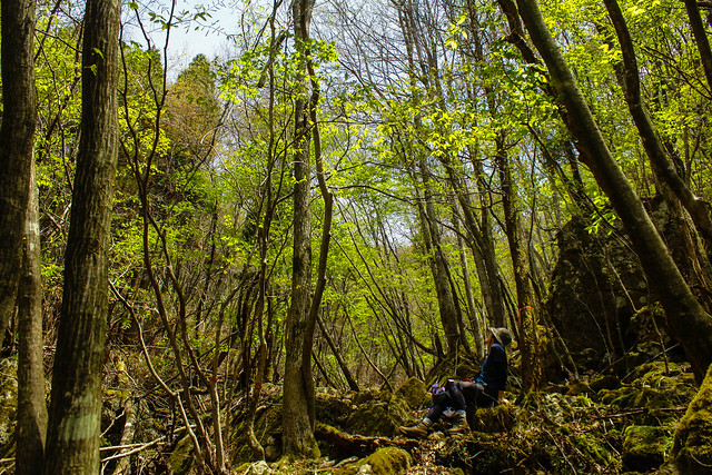 2014-05-06_02586_九州登山旅行.jpg