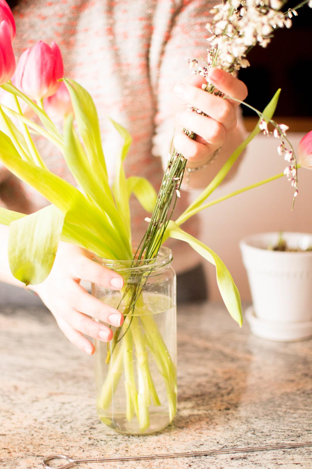 How to grow an indoor green thumb