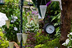 National Gardens Scheme - Bushey, Herts. July 2016