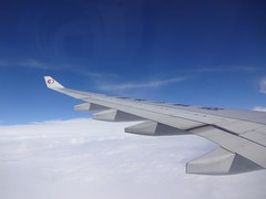Flying Back to Shanghai  by China Eastern Airlines