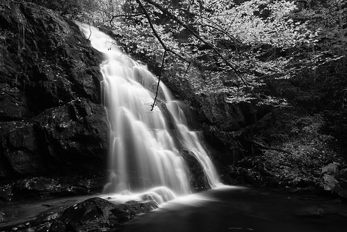 park autumn blackandwhite white black mountains water leaves canon landscape eos blackwhite waterfall rocks great institute national 5d smoky smokies ef 1740mm smokymountains tremont greatsmokymountainsnationalpark gsmnp f4l tonybarber ef1740mm spruceflatfalls