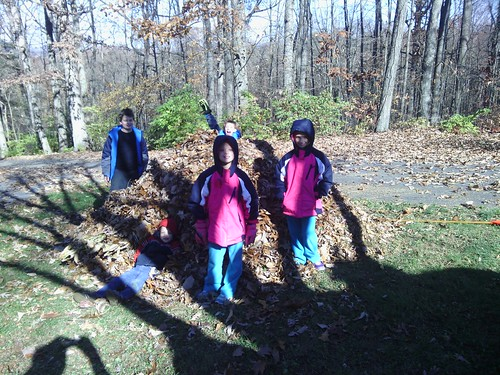 Nov 15 2014 Raking at Janet Puffenbarger (2)