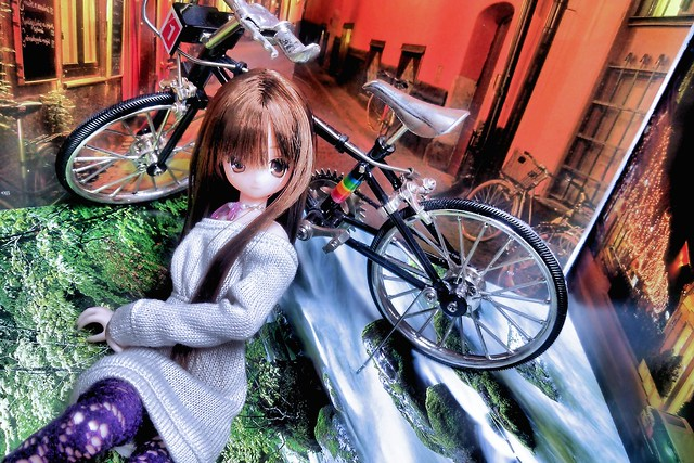 The bicycle (a present of her first anniversary, Oct. 30, 2014)