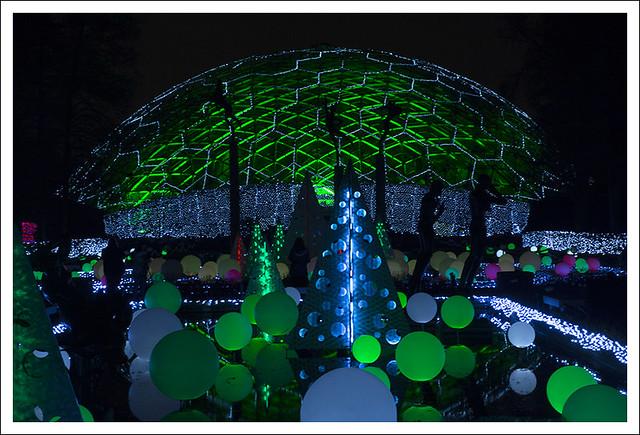 Garden Glow 2014-12-02 8