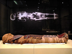 Museo del Papiro