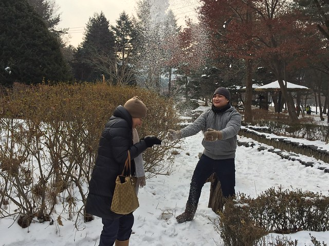 Winter Sonata Tour, Korea Dec 28, 2014 373