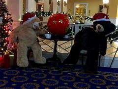 Tired Bears