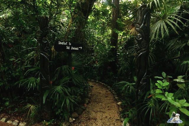 Belize Zoo 19.11.2014 54