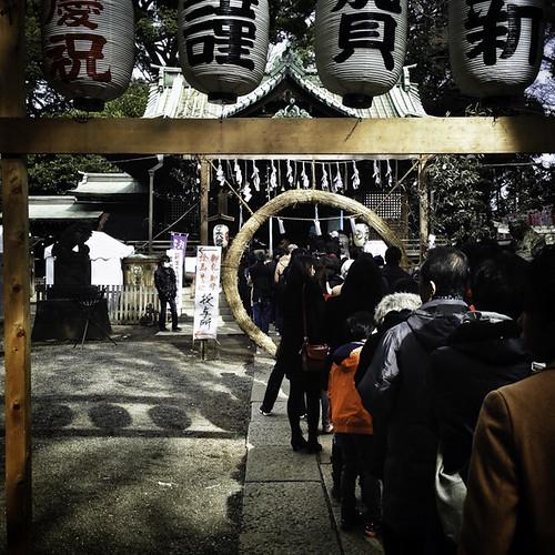 January 2nd Good WIshes 2015, Hachimanjingu Shrine (1 of 1)