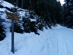 Skitour Toblacher Pfannhorn