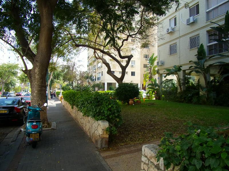 In Ramat Aviv