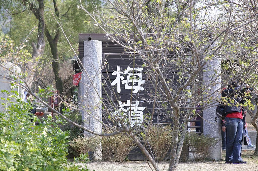 20140119楠西-梅嶺 (1)