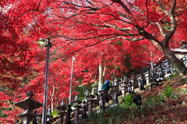 Oyama-dera Temple