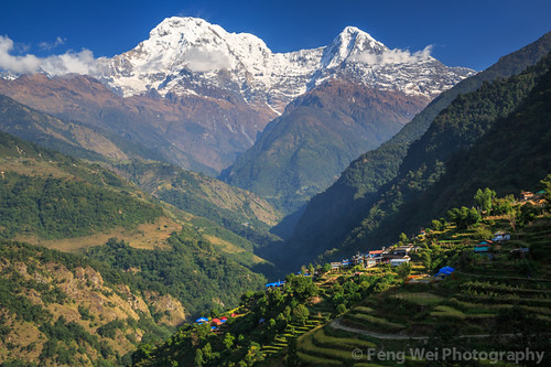 travel nepal color nature beautiful horizontal rural landscape scenery asia terrace outdoor scenic peaceful annapurnacircuit annapurna tranquil himalayas breathtaking gandaki terracedfield annapurnasouth landruk annapurnaconservationarea landuruk