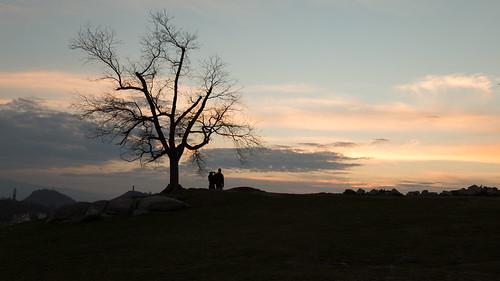 sunset sky people tree plovdiv