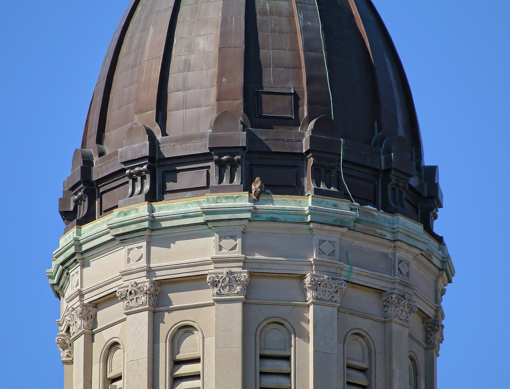 Dora atop the Most Holy Redeemer church
