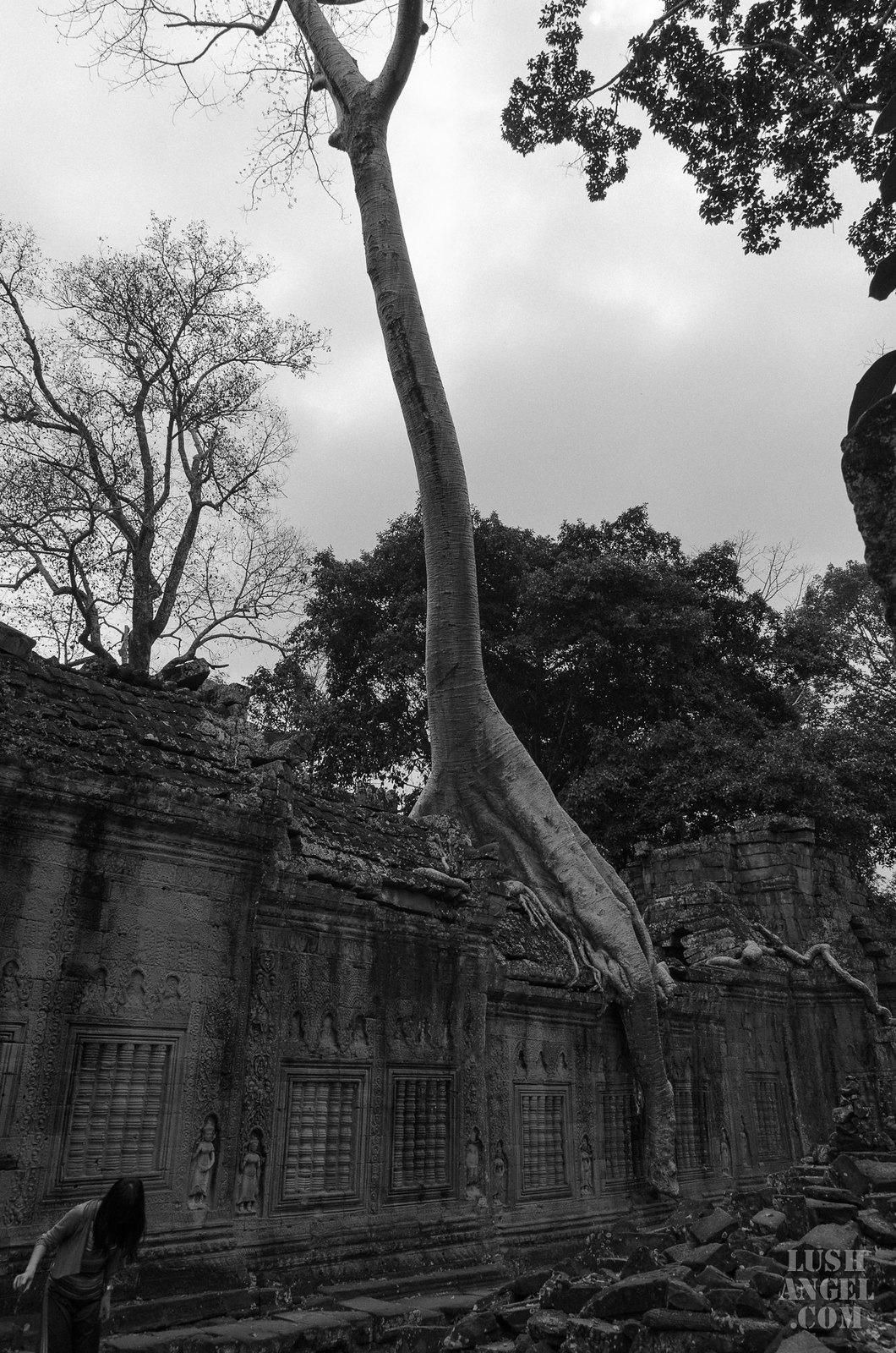 cambodia-siem-reap-72