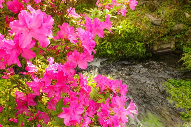 2014-05-06_02708_九州登山旅行.jpg