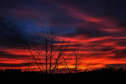 trees red sky sun art texture nature colors clouds sunrise nikon flickr serbia sunshade explore nikkor caffe artland lightroom twop srbija lessismore themagichour lazarevac 365dayproject nubies artristic naturesoul