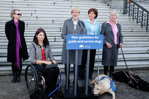 Service Dog Training Requirements British Columbia