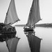Felucca on the Nile by Pepyn Thysse