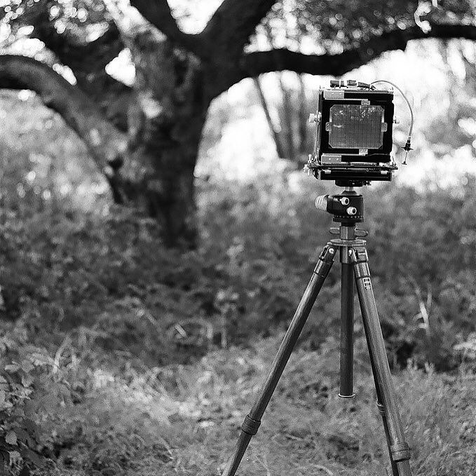 #tachihara #4x5film #4x5 looking forward to the weekend