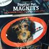 Dachshund? #ima #magnet #dachshund #dog