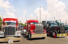Three Peterbilts wait to be judged at 34th annual Shell Rotella SuperRigs truck beauty contest in Joplin Missouri