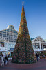 Cape Town / Christmas tree at the Victoria Wharf