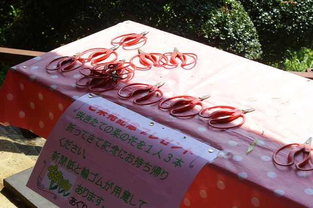 2014-03-16_00092_高松山