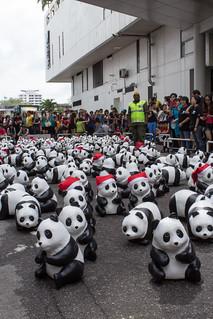 1600_Panda_Jalan_Lintang_Penang_06