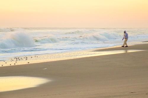 ocean beach sunrise dawn solitude alone florida solitary sandpipers indialantic