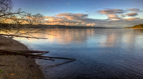 park autumn trees beach ferry clouds point washington ship waterfront cargo container tacoma hdr defiance
