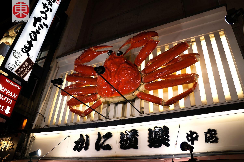 Кани Дораку, Дотонбори, Осака, Япония | Kani Doraku, Dotonbori, Osaka, Japan