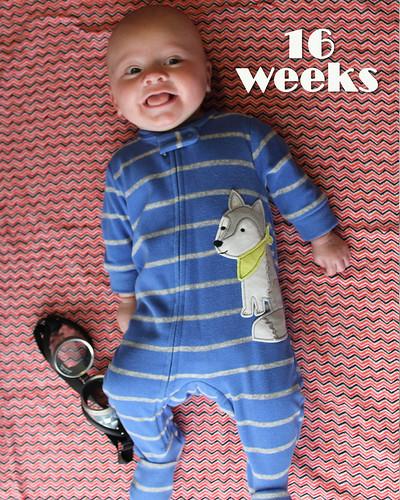 Week 16