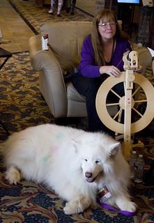 Giant Fluffy Dog!