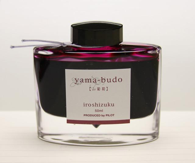 Ink Shot Review Pilot Iroshizuku Yama-Budo @PilotPenUSA (7)