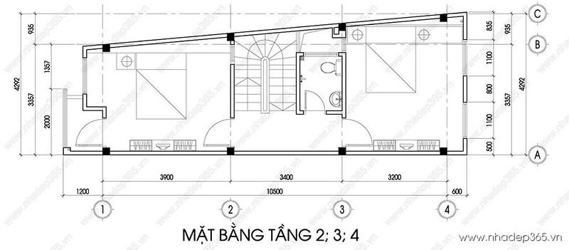 tang2-3-4