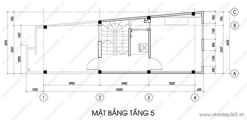 tang-5