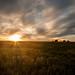 Denton Sunset by trusler_james