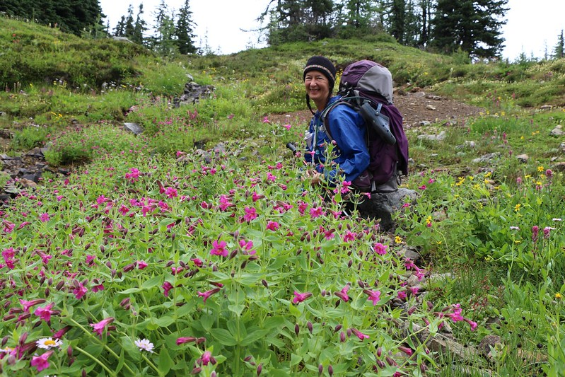 Vicki enjoying the lovely wildflowers where Benson Creek crosses the PCT