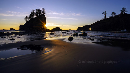 Second Beach Coastal Sunstar
