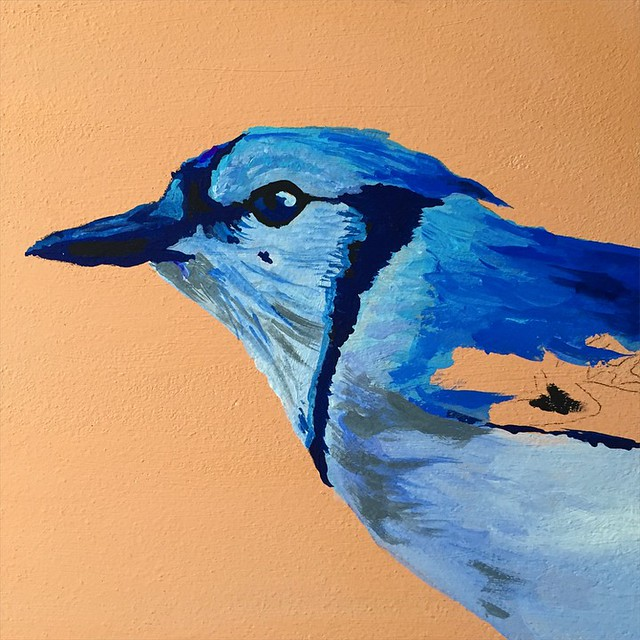 Finishing layer one #painting #gouache #art #bluejay #birdart #meandwee #megancarty #holbein #acryla #tinyart