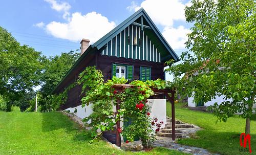 Phot.Austria.Csaterberg.Kellerstöckl.01.061622.9187.jpg